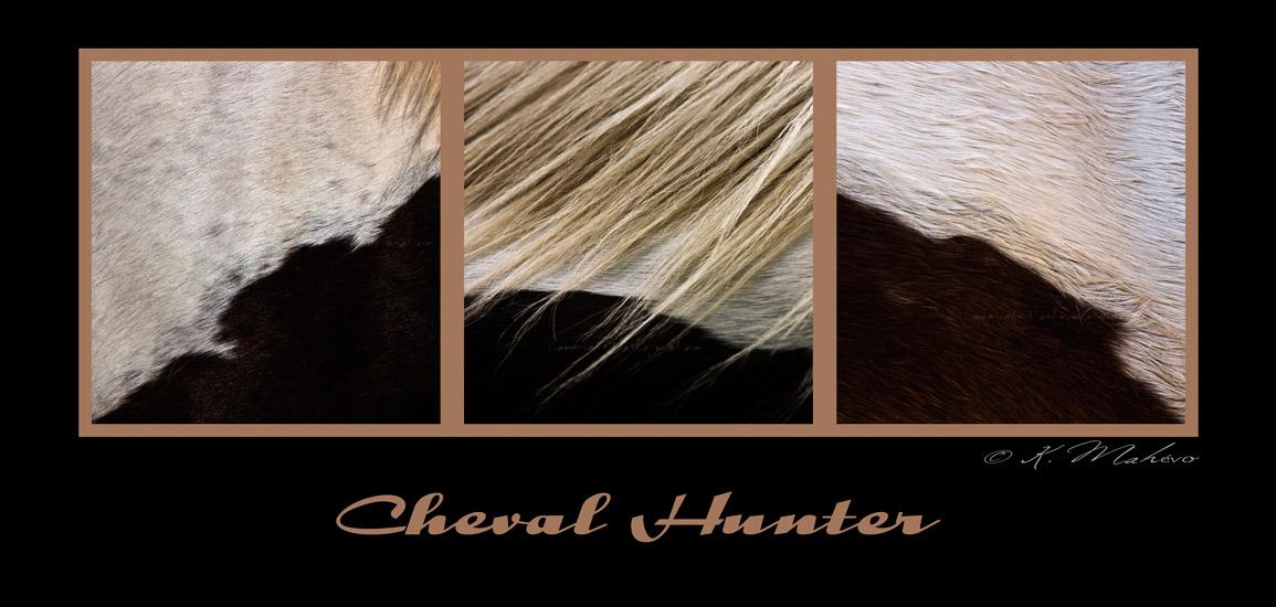 cheval hunter