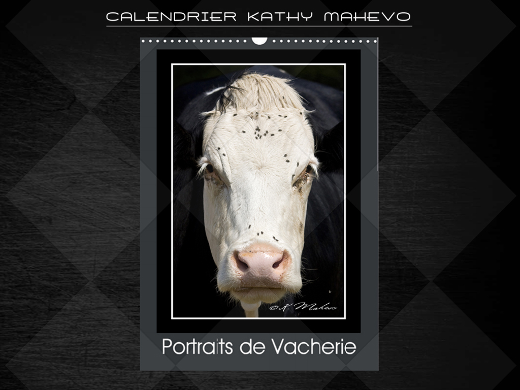 004 portraits de vacherie livre affiche 1
