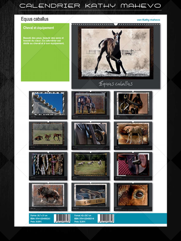 006 equus caballusb 1
