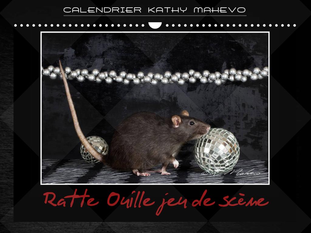 008 ratte ouille jeu de scene